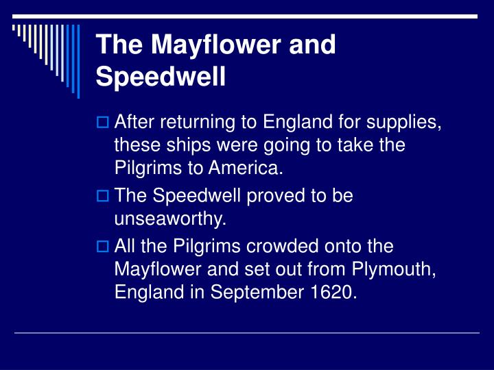 The Mayflower and Speedwell