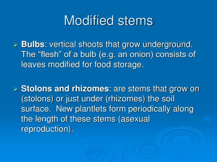 Modified stems