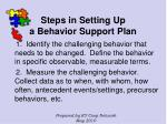 steps in setting up a behavior support plan