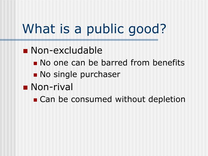What is a public good