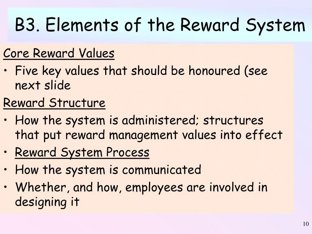 B3. Elements of the Reward System