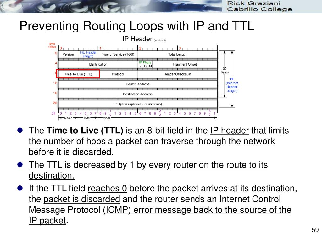 Preventing Routing Loops with IP and TTL