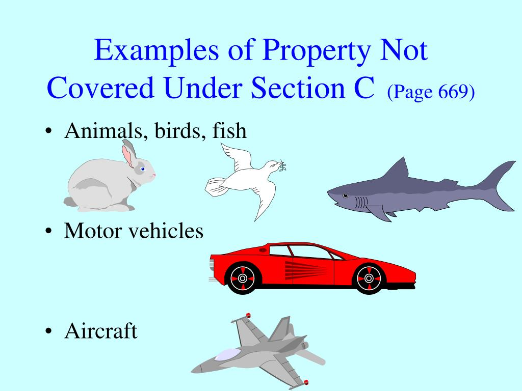 Examples of Property Not Covered Under Section C
