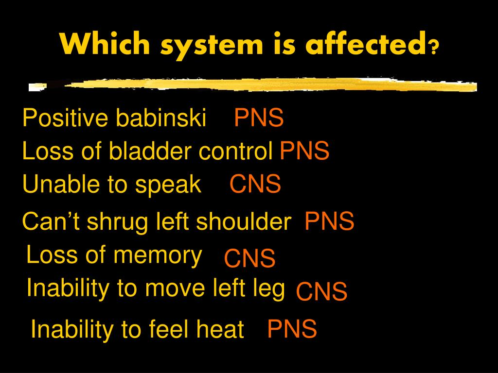 Which system is affected?