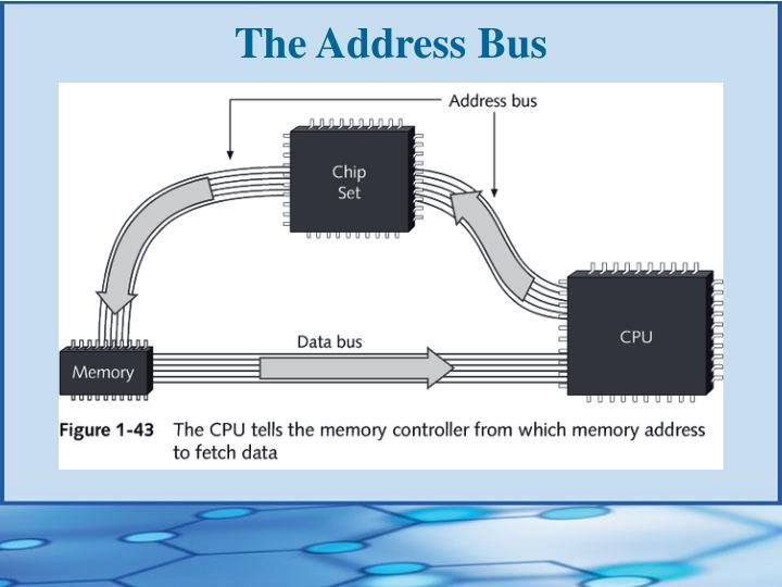 The Address Bus
