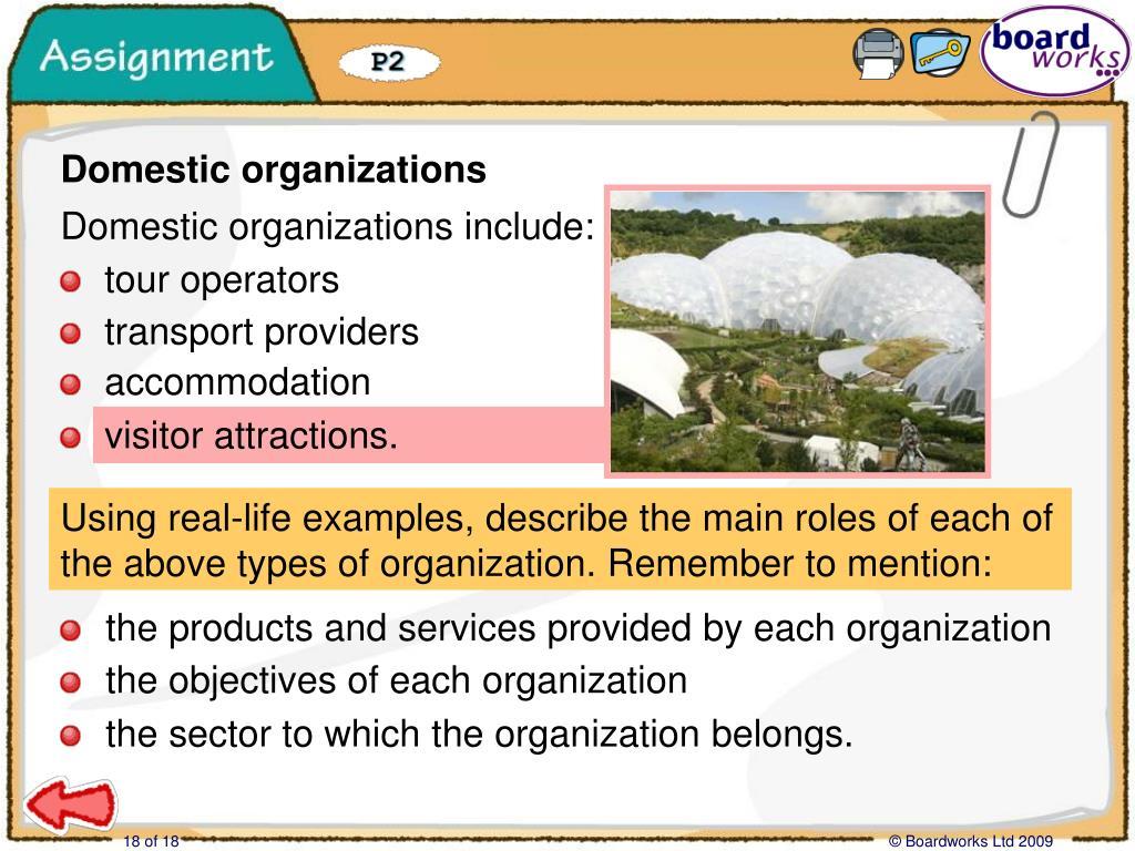 Assignment: Domestic organizations