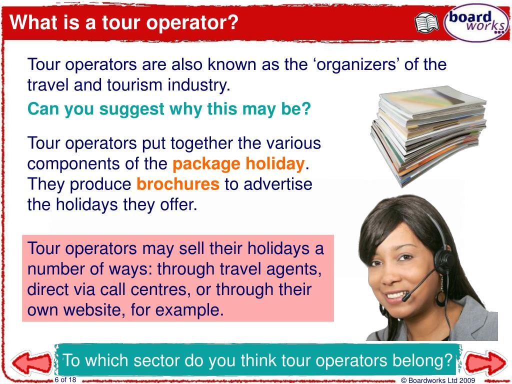 What is a tour operator?