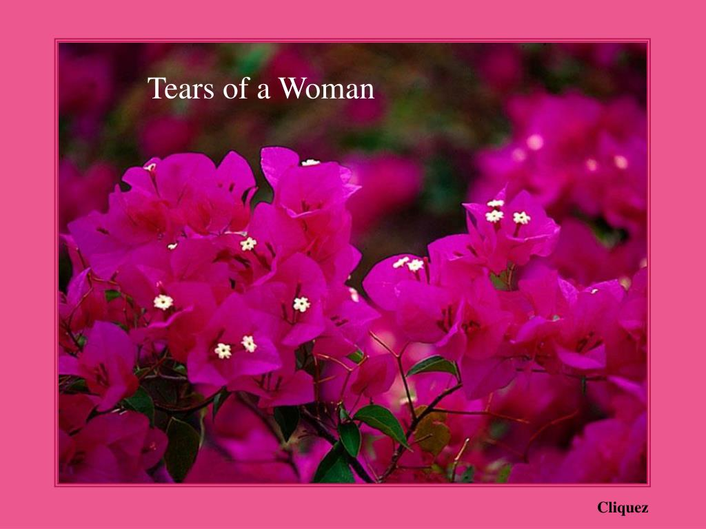Tears of a Woman
