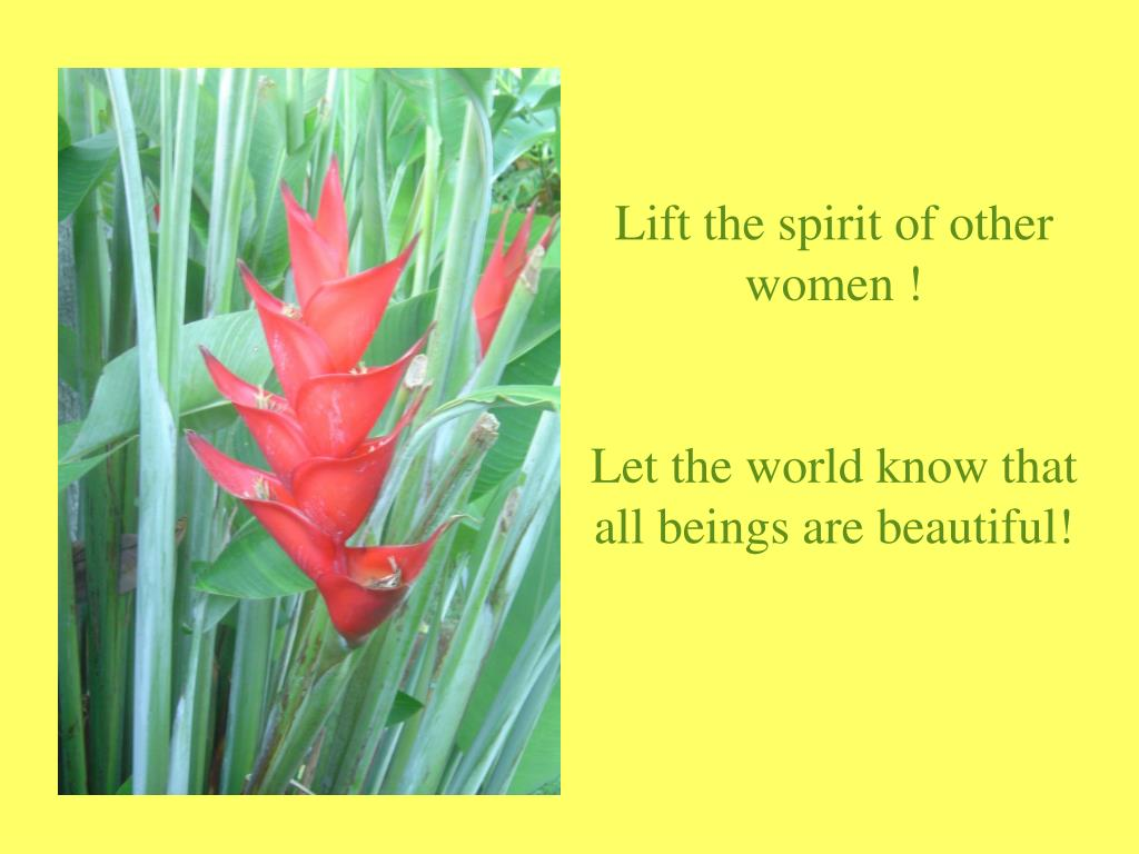 Lift the spirit of other women !