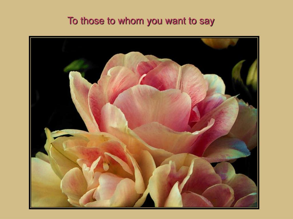 To those to whom you want to say