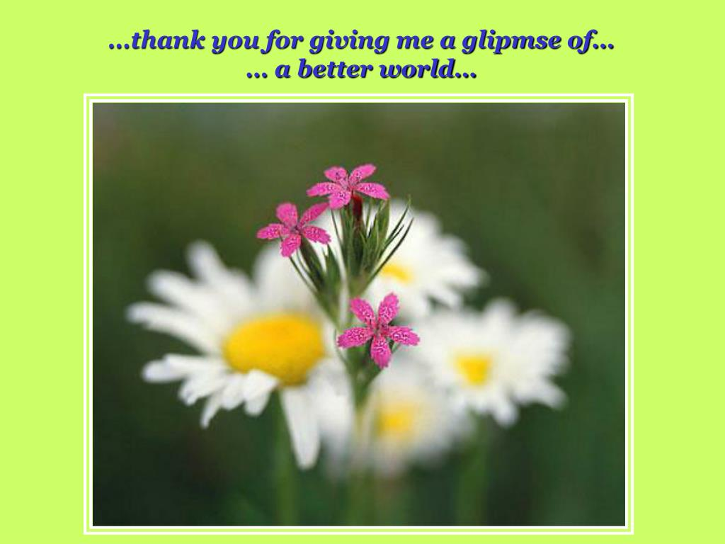 …thank you for giving me a glipmse of…