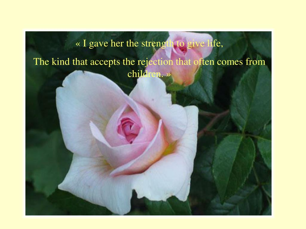 « I gave her the strength to give life,
