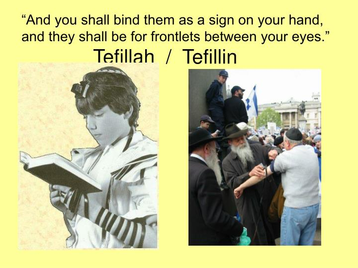 """""""And you shall bind them as a sign on your hand, and they shall be for frontlets between your eyes."""""""