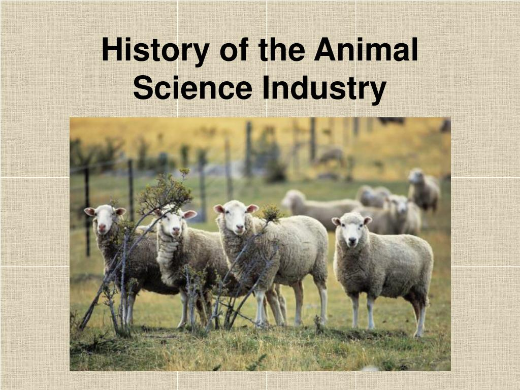 history of the animal science industry l.