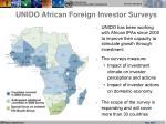 unido african foreign investor surveys