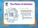 the chain of infection2