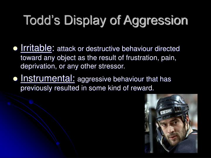 Todd's Display of Aggression