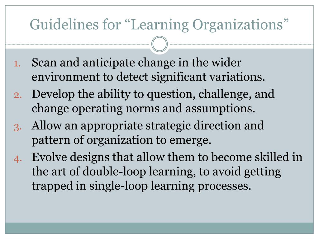 "Guidelines for ""Learning Organizations"""