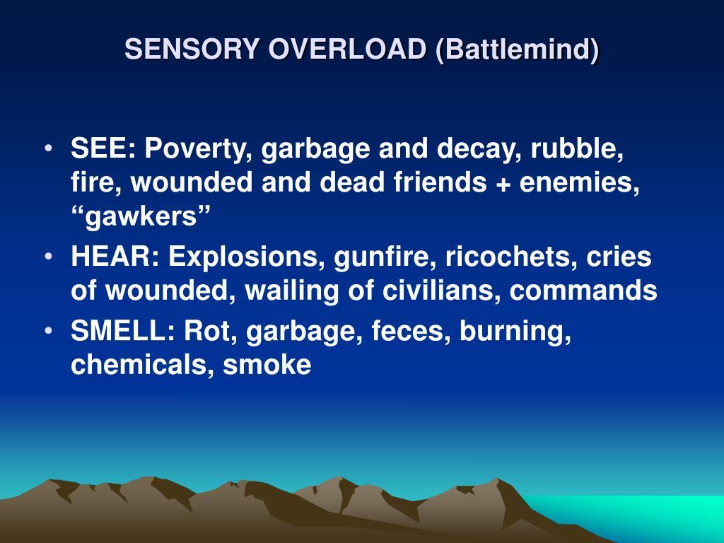 SENSORY OVERLOAD (Battlemind)