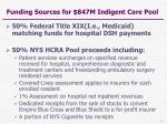funding sources for 847m indigent care pool