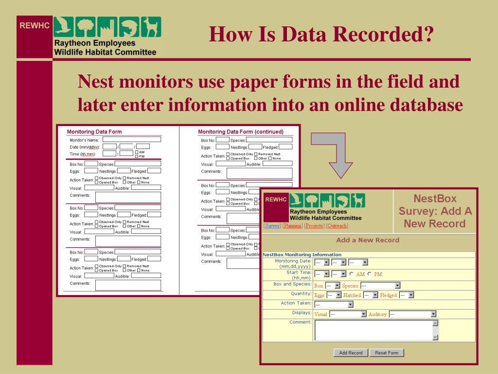 How Is Data Recorded?
