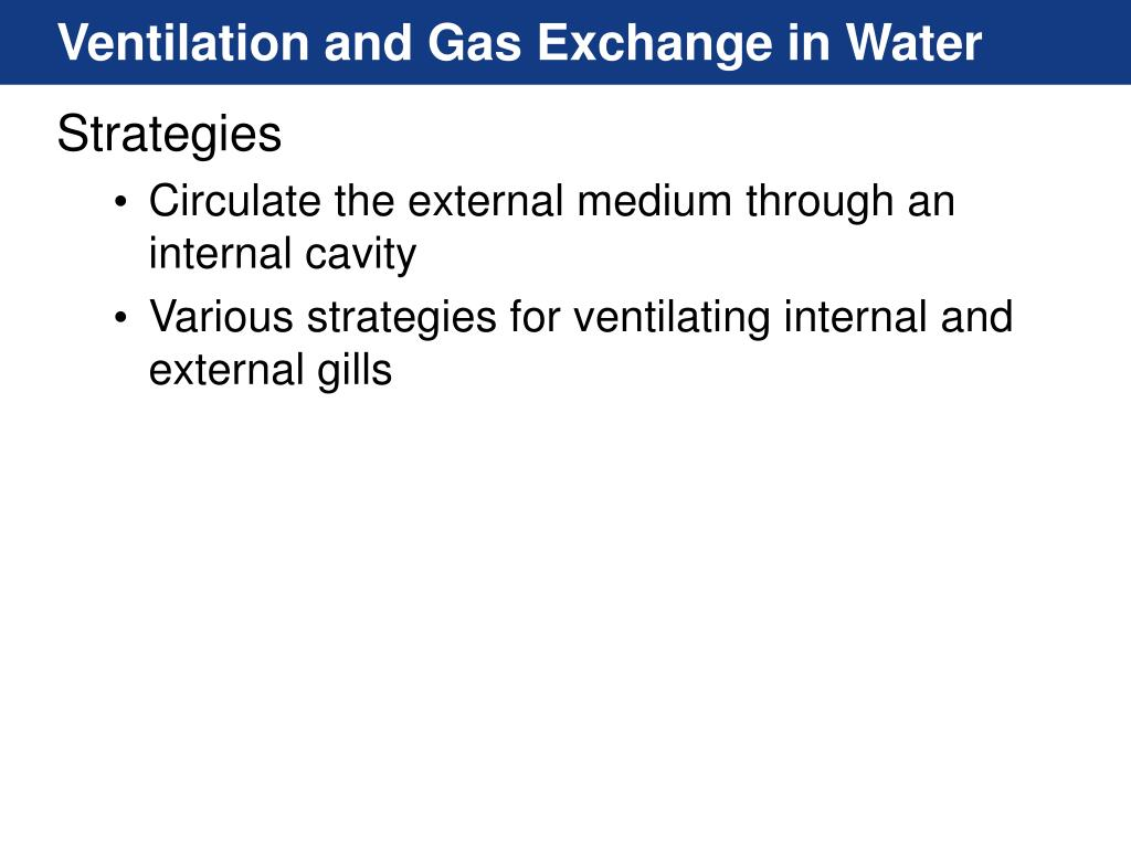 Ventilation and Gas Exchange in Water