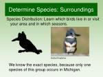 determine species surroundings