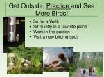 get outside practice and see more birds