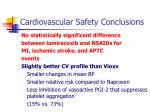 cardiovascular safety conclusions