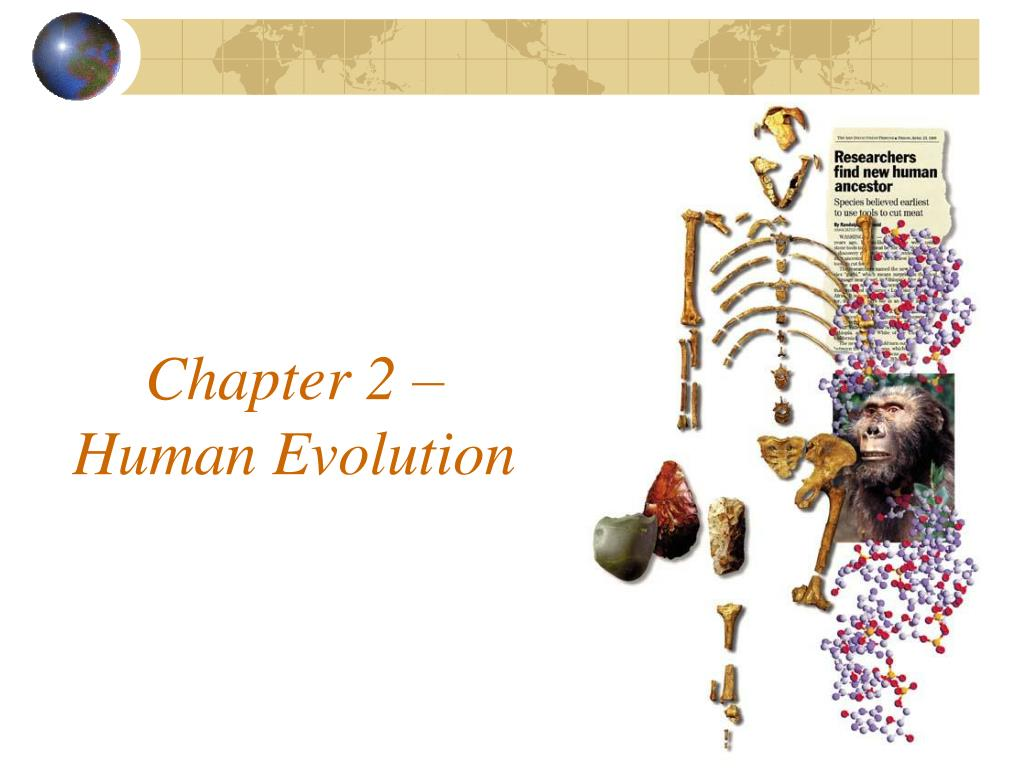 chapter 2 human evolution l.