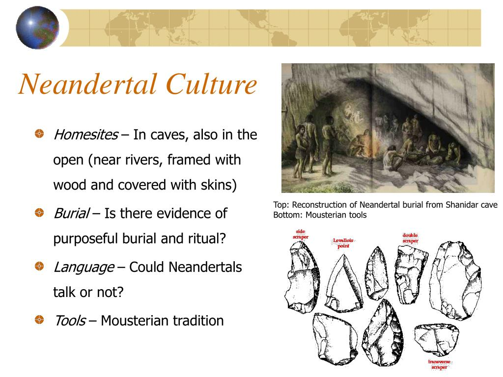 Neandertal Culture