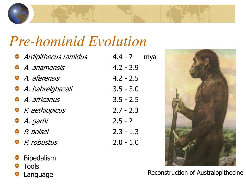 Pre-hominid Evolution