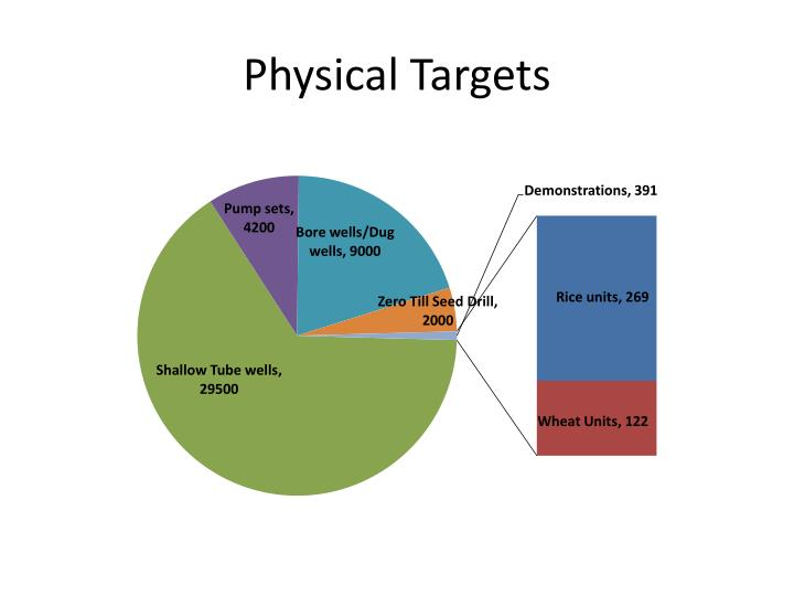 Physical Targets
