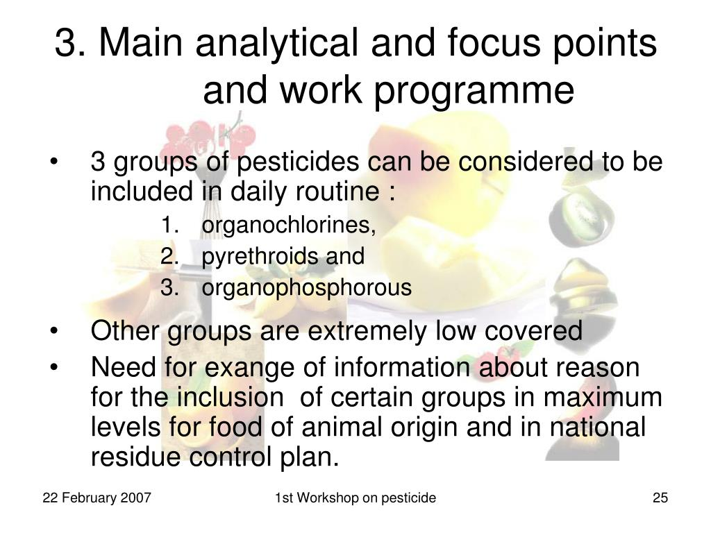 3. Main analytical and focus points and work programme