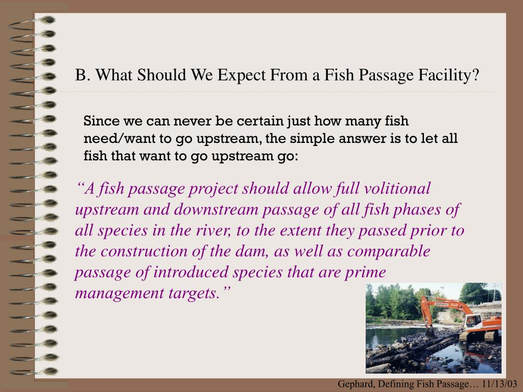 B. What Should We Expect From a Fish Passage Facility?