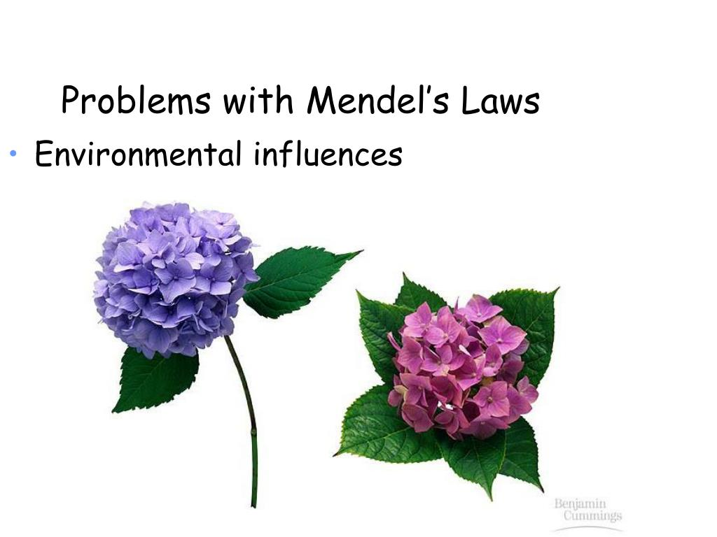 Problems with Mendel's Laws