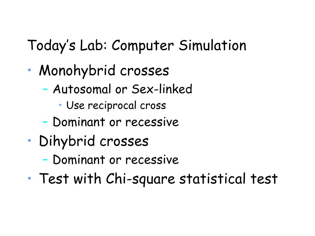Today's Lab: Computer Simulation
