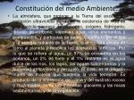 constituci n del medio ambiente5