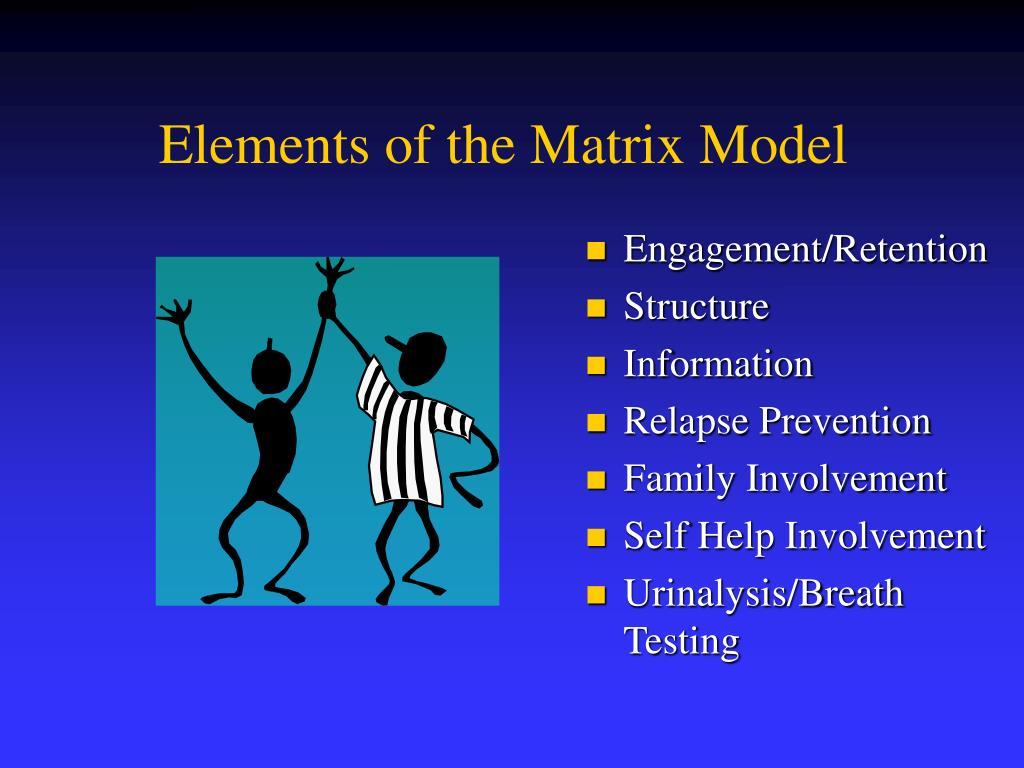Elements of the Matrix Model