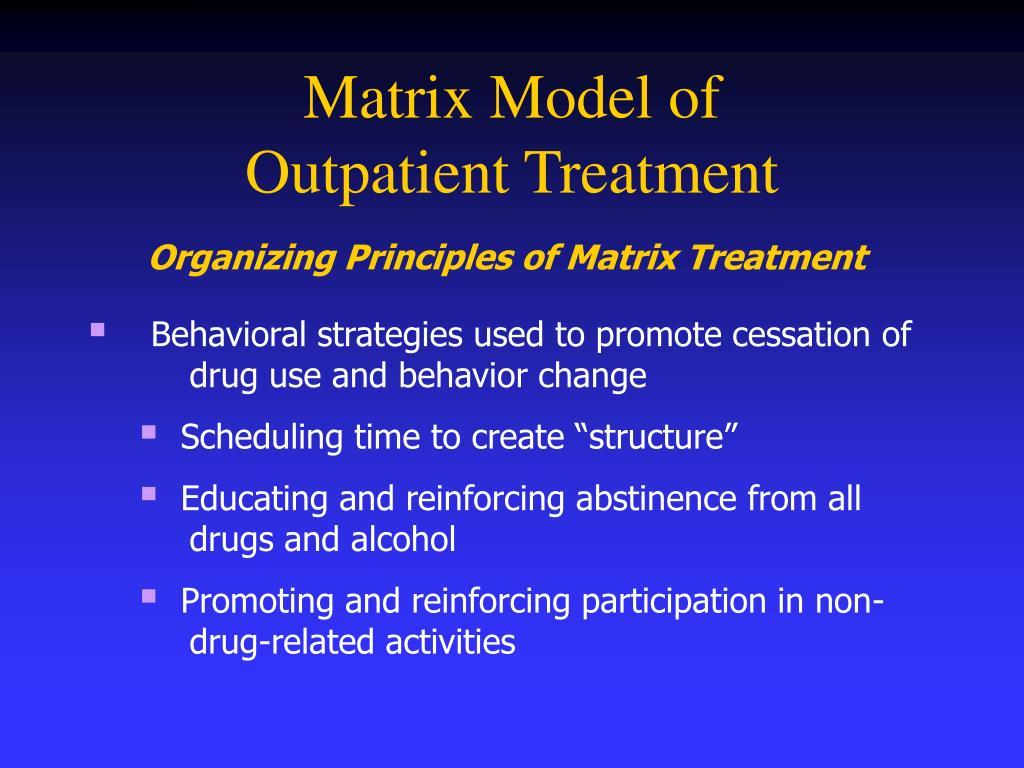 Matrix Model of
