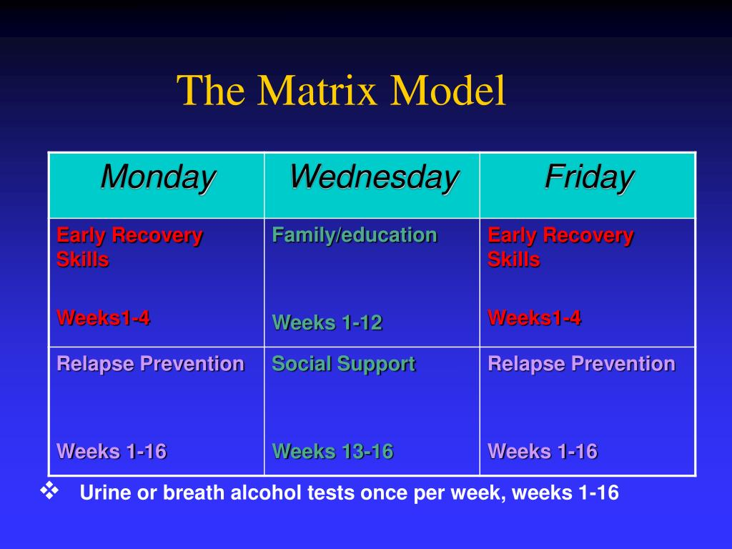 The Matrix Model