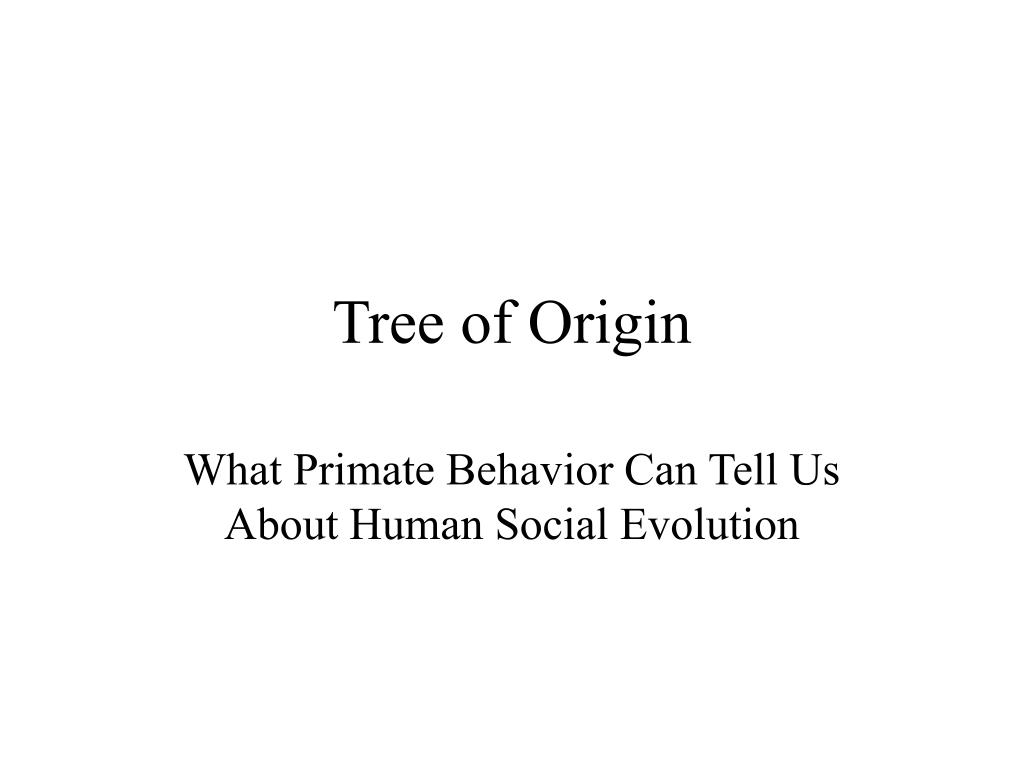 tree of origin l.