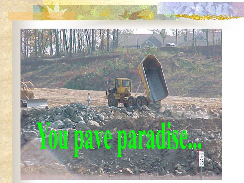 You pave paradise...