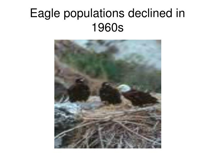 Eagle populations declined in 1960s