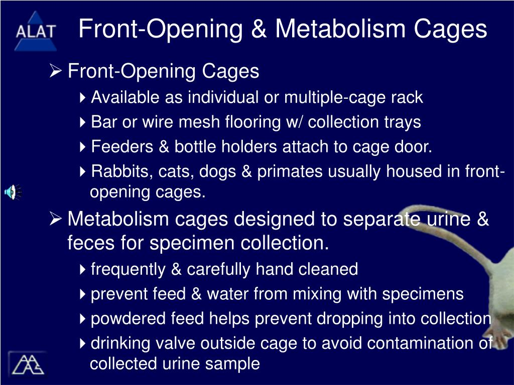 Front-Opening & Metabolism Cages