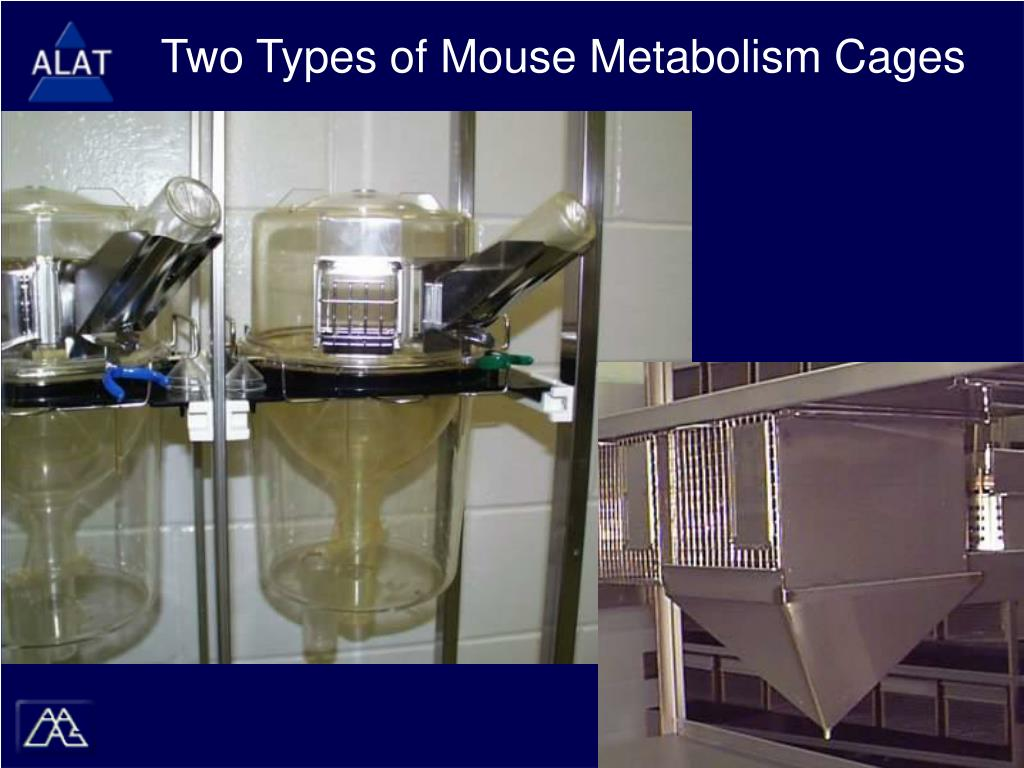 Two Types of Mouse Metabolism Cages