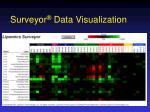 surveyor data visualization