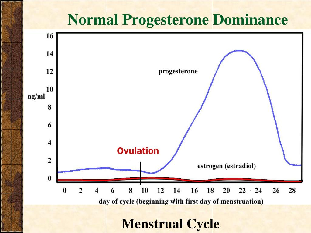 Normal Progesterone Dominance