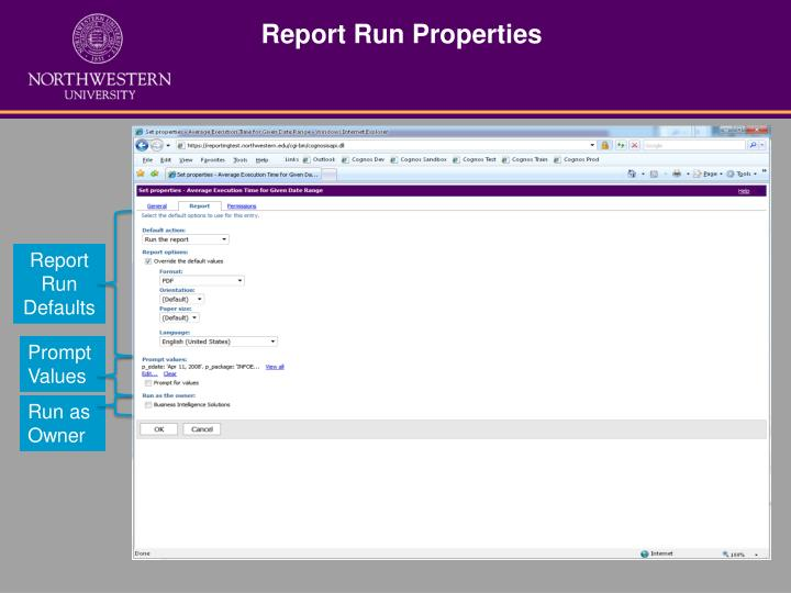 Report Run Properties