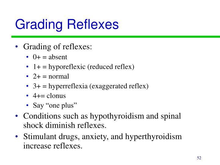 Grading Reflexes